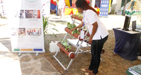 TU-K's Vertical Farming Technology causes a stir